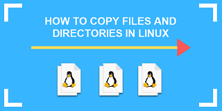 how to copy file to multiple directories in ubuntu
