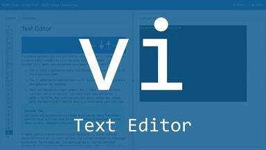 search in vi editor