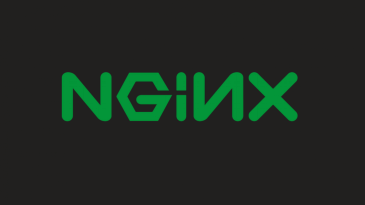 Force NGINX to Serve New Static Filles