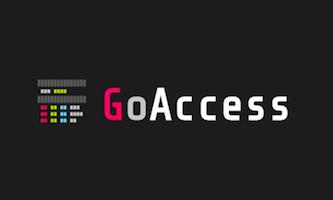 install goaccess log analyzer in ubuntu